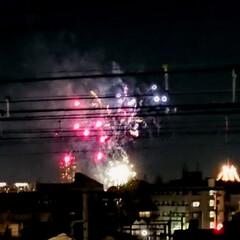 寒い/遊園地/冬の花火/掃除/冬 今夜19時に、近所の遊園地で花火が上がり…