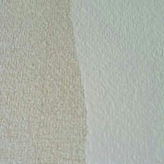 パーフェクトホワイト/ペンキ/カインズ/DIY/玄関 玄関の壁紙を塗っています  元々、白とは…