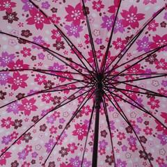 安売り/傘/フォロー大歓迎/LIMIAファンクラブ/暮らし 午後から雨のようです  先日、傘を買いま…
