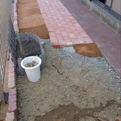 固まる砂利/カインズ/ガーデン/ガーデニング/花壇/フォロー大歓迎/... 固まる砂利を敷いています  日陰だけど小…