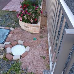 固まる砂/カインズ/花壇/フォロー大歓迎/風景/住まい カインズの固まる砂で花壇の後ろ側をやって…