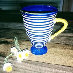 お気に入りカップ/珈琲の香り◌ ͙❁˚/ひとり時間 お気に入りの カップ🎶  誰も居ない部屋…(1枚目)