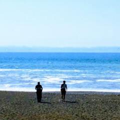 旅行/おでかけワンショット 三保の松原 海が綺麗でした  父と息子が…