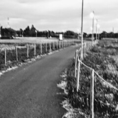 リミアの冬暮らし 早朝    冬の散歩道