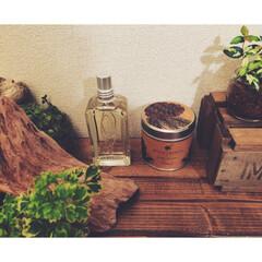 perfume/ロクシタン/インテリア/無印良品/住まい/ファッション