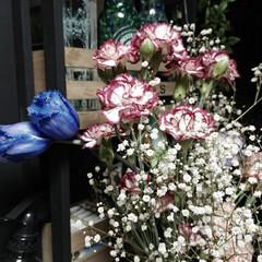 LIMIAスイーツ愛好会 昨日は親友とのデート☆°。⋆⸜(* ॑꒳…