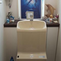 トイレ バリ、ハワイ。 旅の想い出が詰まったワク…