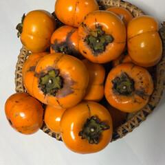 柿 家の柿 アリさんもたくさんいます^_^