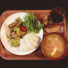 ニトリ 本日のお買い物 ニトリのトレーとお皿  …