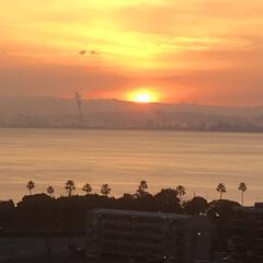 住まい 部屋から見える景色、朝です。日の出です。