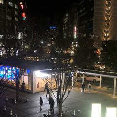 博多駅/福岡/冬/風景 さむ〜い 博多駅 イルミ撤収して寂しかぁ…