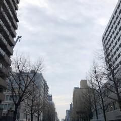 雲/空/景色/冬/福岡/博多 2019.1.8 am9:00 福岡市博…