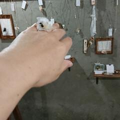 チクチクするだけ/縫い物/手作り/ハンドメイド/アクセサリー/ビーズ/... 端切れ(裂き布)とビーズのリング 小さな…(2枚目)