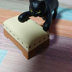 ニャンコ同好会 ガチャガチャで 跳び箱猫見つけました。 …
