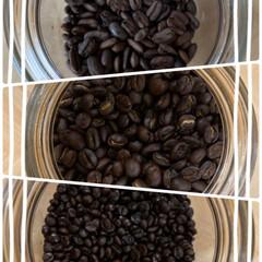 ブラジル/エチオピア/インドネシア/稀少豆/個性がある/小さいものから大きいもの➰細長いものまで/... コーヒー豆色々☆  カフェオレ派ですけど…