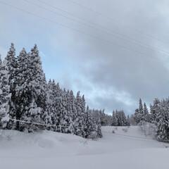 神様お願い/玄関うまる/流雪溝もストップ/除雪間に合わず/雪になれている雪国/つかの間の晴れ/... つかの間の晴れ…☆  大雪…そして大雪☃…