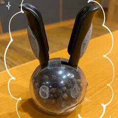 プジョー ペパーミル トール 20101901 11cm | プジョー(皿)を使ったクチコミ「ペッパーミル☆  うさちゃんのペッパーミ…」(2枚目)