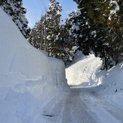 他色々/雪景色をこれでもか?!/雪、ゆき、ユキ 雪、ゆき、ユキ他☆  雪景色をこれでもか…(2枚目)