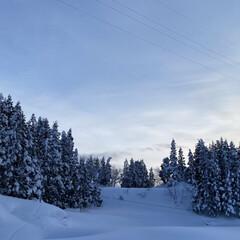他色々/雪景色をこれでもか?!/雪、ゆき、ユキ 雪、ゆき、ユキ他☆  雪景色をこれでもか…(1枚目)