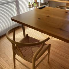朝とお昼/ゆがんだけど丈夫/キッチン作りつけ/ダイニングテーブル/キッチン/暮らし/... ダイニングテーブル☆  1枚板のダイニン…