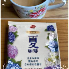 夏より春の方が美味しかった/小川珈琲がお気に入り/1人の時はドリップで/豆からいれるコーヒー/普段はコーヒーメーカー/ドリップコーヒー/... ドリップコーヒー☆  普段はコーヒーメー…