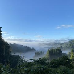 実家から200mほど/涼しく空気も澄んでいる/狙って初めて撮れた/今朝/景色/雲海/... 雲海☆  今朝の雲海です♪ 狙って初めて…