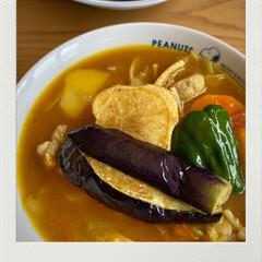 美味しくいただきました/揚げた野菜をのっけて/スープカレー/母が初めて作ってみた/お昼/今日/... 今日のランチ☆  今日のお昼は母が初めて…
