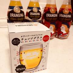 グラス/オランジーナ/おまけ/キッチン/雑貨 【おまけ】オランジーナ4本買うと貰えるグ…