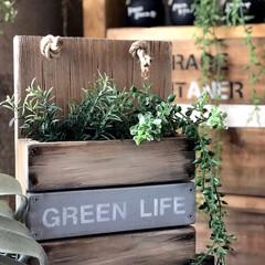 古材風/グリーンボックス/DIY/家具/住まい/ハンドメイド おはようございます! 簡単なグリーンボッ…