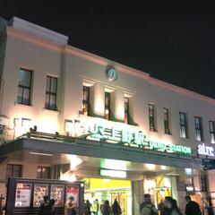 クリスマス/上野駅/イルミネーション/フォロー大歓迎/おでかけ 上野駅🚉  クリスマスツリー🎄🎉🎀🎊🎁 …(2枚目)