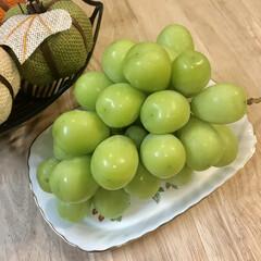 食欲の秋/ブドウ/秋の味覚/至福のひととき/シャインマスカット  こんばんは✩⃛ೄ✯ …(1枚目)
