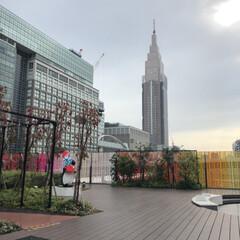 新宿/フォロー大歓迎/風景/おでかけ 新宿꒰๑˃꒵˂꒱◞ ♪⋆ฺ。      (1枚目)