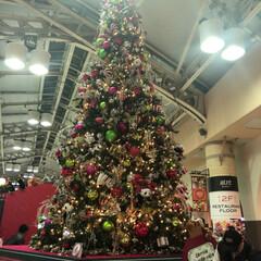 クリスマス/上野駅/イルミネーション/フォロー大歓迎/おでかけ 上野駅🚉  クリスマスツリー🎄🎉🎀🎊🎁 …(1枚目)