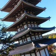 秋/風景 安達ヶ原の公園  紅葉がきれいでした🍁 …(3枚目)
