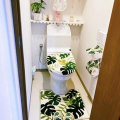 トイレカバー/トイレットペーパーホルダー/トイレ/モンステラ お恥ずかしいのですが、ご覧下さい……🙇🏻…