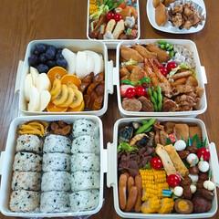 ケンタッキー/お弁当/春のフォト投稿キャンペーン/ありがとう平成/令和の一枚/フォロー大歓迎/... 今日はお弁当を持ってお出かけしました😊 …