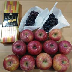 大分のお菓子/青森のリンゴ/グルメ/フード/スイーツ/シュトレン/... 今日はお友達や色んな人から貰い物をした日…