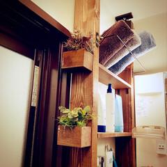 棚/フェイクグリーン/アイアンバー/ラブリコ/洗面所収納/洗面所/... 洗面所にラブリコして 2×4材の横にフェ…