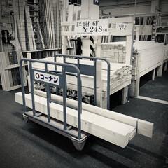 ワンバイフォー材/材料調達/購入/コーナン/DIY/インテリア 先週末に買った板材はまだ放置中。(1枚目)