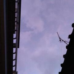 空/風景 今日も 見上げてみた 17︰01