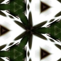 おとなのお遊び/万華鏡 スマホ写真の万華鏡という機能を使って。 …