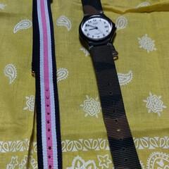 casio/イメージチェンジ/腕時計/春のフォト投稿キャンペーン 腕時計のベルト変えてみたよ。 明るい色。