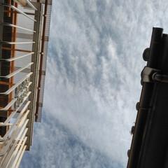 空/冬/風景 よーくみたら晴れ。 9︰27