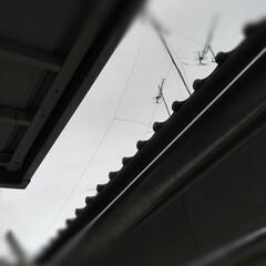 賃貸アパート/風景/春のフォト投稿キャンペーン 今日は雨。