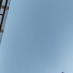 空/風景 16︰13の空 すっごく体をそらして見上…