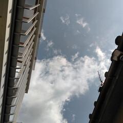空/春のフォト投稿キャンペーン/令和の一枚/風景 5/1 朝の空。