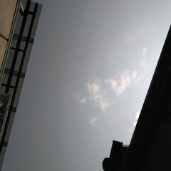 空/風景 朝の空。 くもりっぽいな… 一日がんばる…