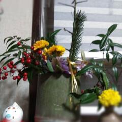 あけおめ/お正月 今日の一枚 お正月飾り