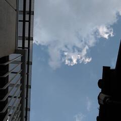 空/風景 久々に見上げてみた。 15︰37 又日が…