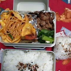 お弁当記録/夫弁当/お弁当って大変/フード/わたしの手作り おっさんず弁当。 食費はおさえる家。